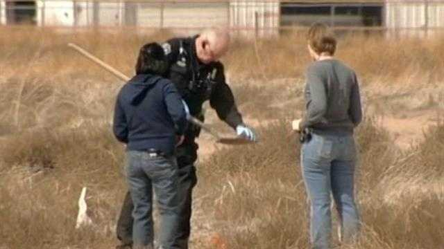 Two sets of bones found in the same South Valley field are still being analyzed.