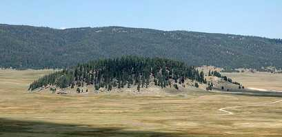 Bigfoot in the Valles Caldera National Preserve