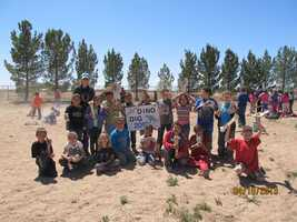 """Dexter Elementary's second graders have school spirit in everything they do! Mrs. Henington's class shows off their awesome """"dino bones"""" they found in an annual dino dig!"""