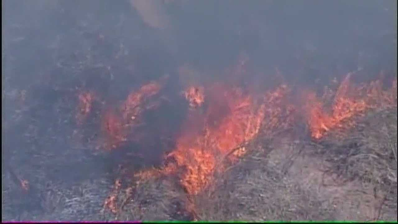 The threat of fire so dangerous the Bosque is shutting down in three counties and Albuquerque is upping their restrictions.