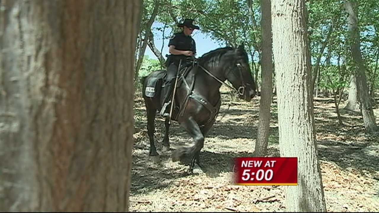 A.P.D IS USING NEW TOOLS TO FIGHT FIRE IN THE BOSQUE- HORSES.