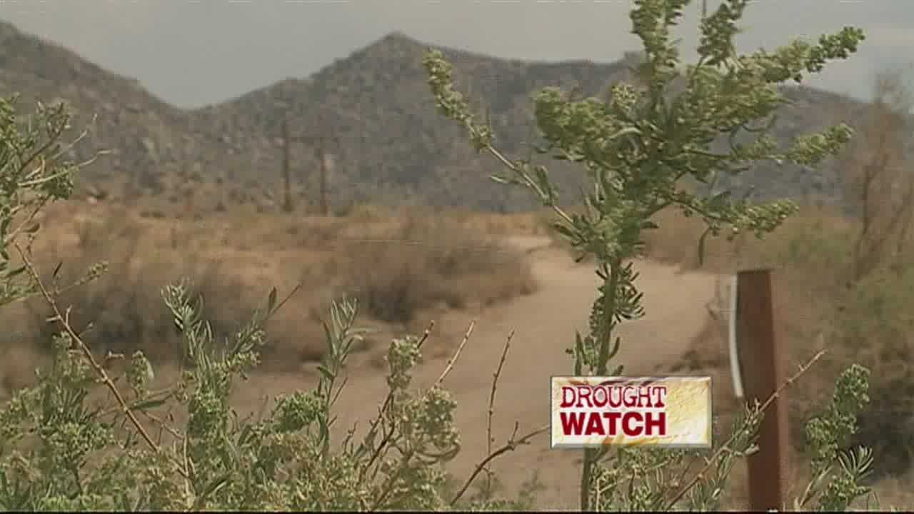 OVER 98 PERCENT OF NEW MEXICO IS IN SEVERE DROUGHT.