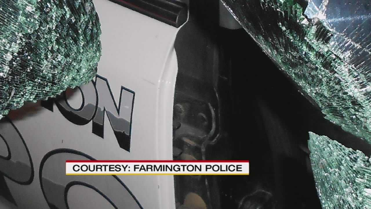 img-Man high on bath salts and meth breaks into police car