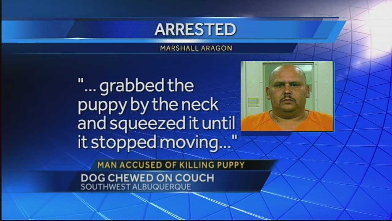 "Marshall Aragon told police, ""I squeezed the puppy by the neck until it sopped moving"". All because the puppy was chewing on the couch."