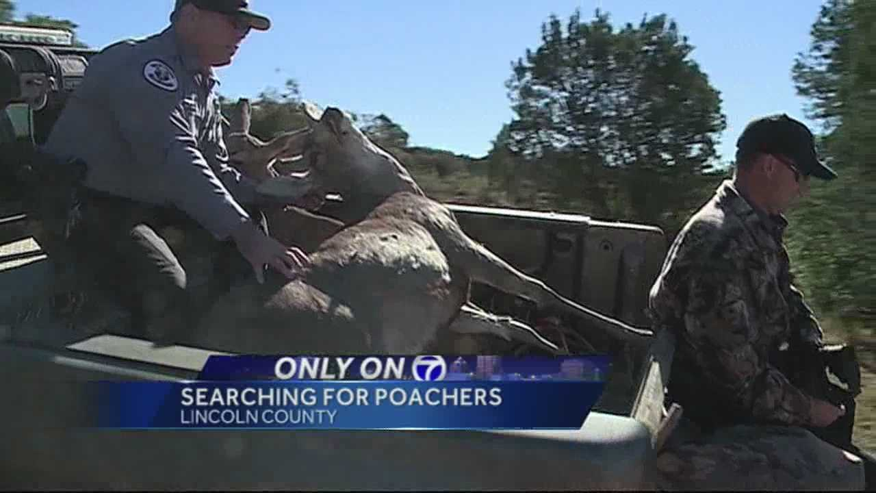 Action 7 News follows NM Game and Fish as they lookout for poachers.