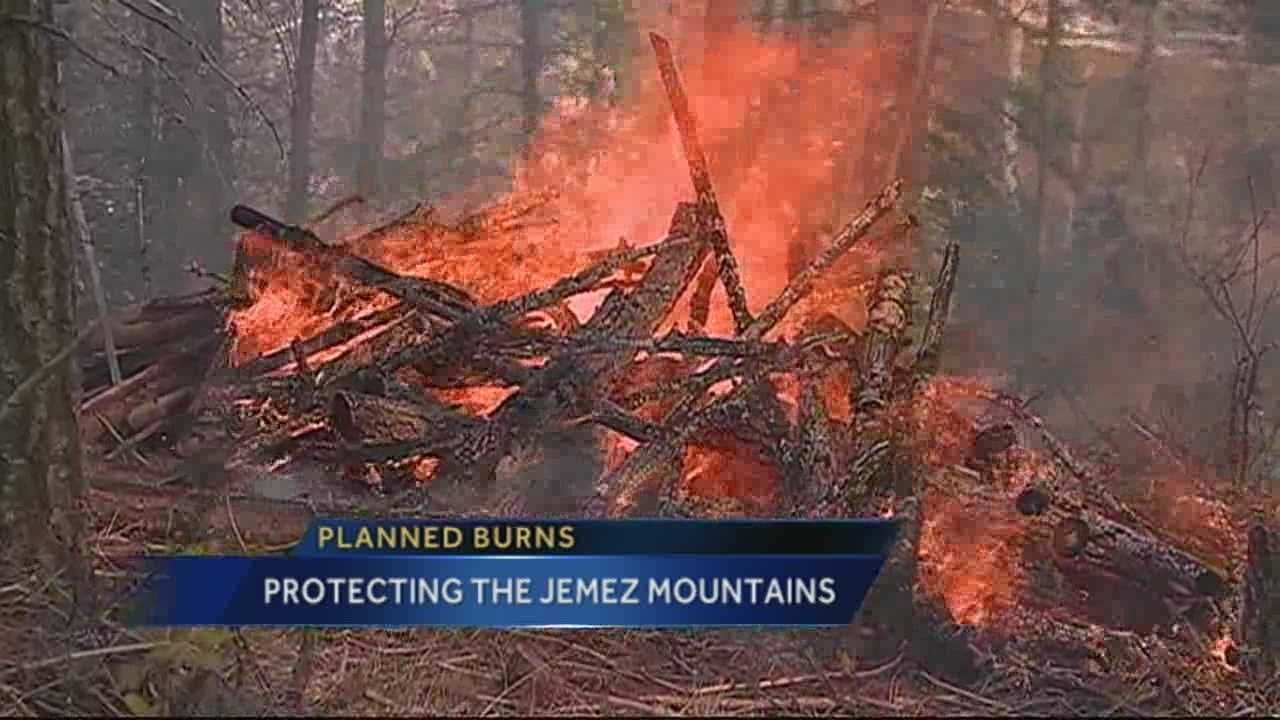 Firefighters executing planned burns in Jemez Mountains