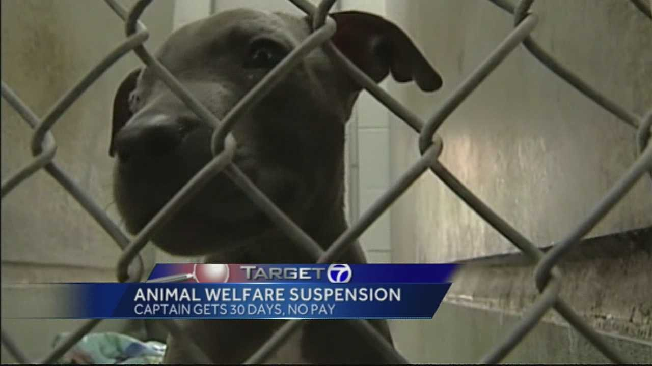The man who oversees the cities animal welfare officers has been temporarily suspended.