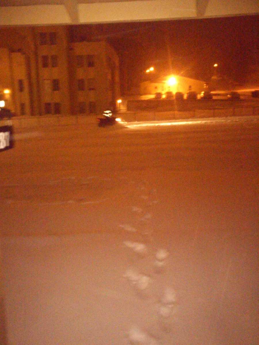 Snow in Raton, N.M.