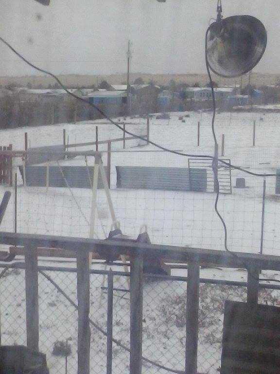 Snow in Edgewood, N.M.