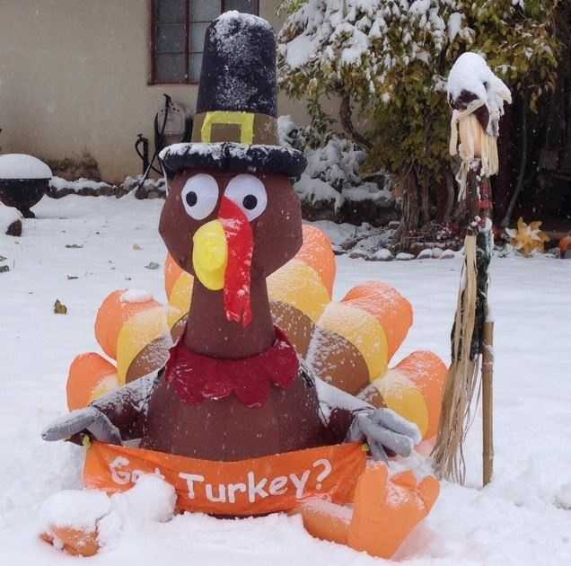 And finally, a turkey. Happy Thanksgiving!