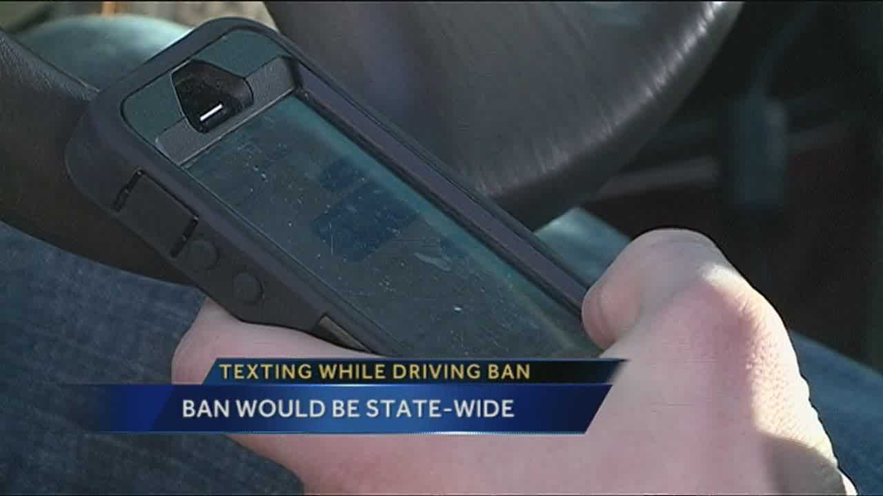 One state lawmaker is trying to make texting while driving illegal in New Mexico.