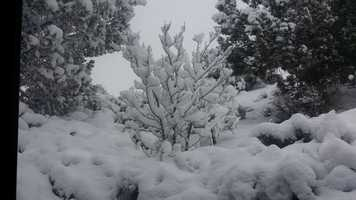 Ruidoso | Up to 1""