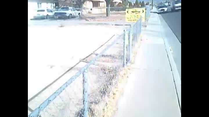 See extended lapel camera video from Officer Jones' investigation in the Omaree Varea case.