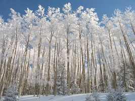 Snow in the Sangre de Cristo MountainsFresh Snow in the Sangre de Cristo Mountains. Time for some Skiing!