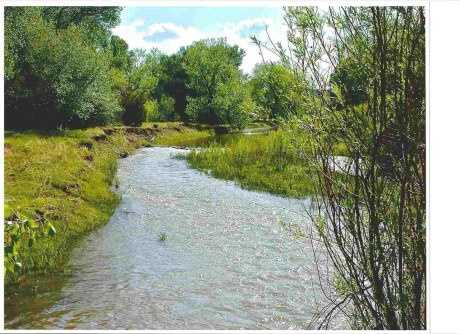 Take a peek at this 1,000 acre property for sale in Watrous, N.M. featured on Realtor.com