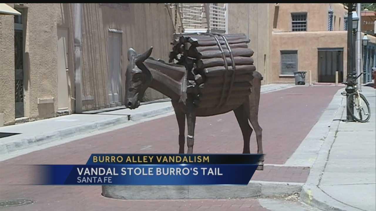 Vandal steals burro's tail in Santa Fe