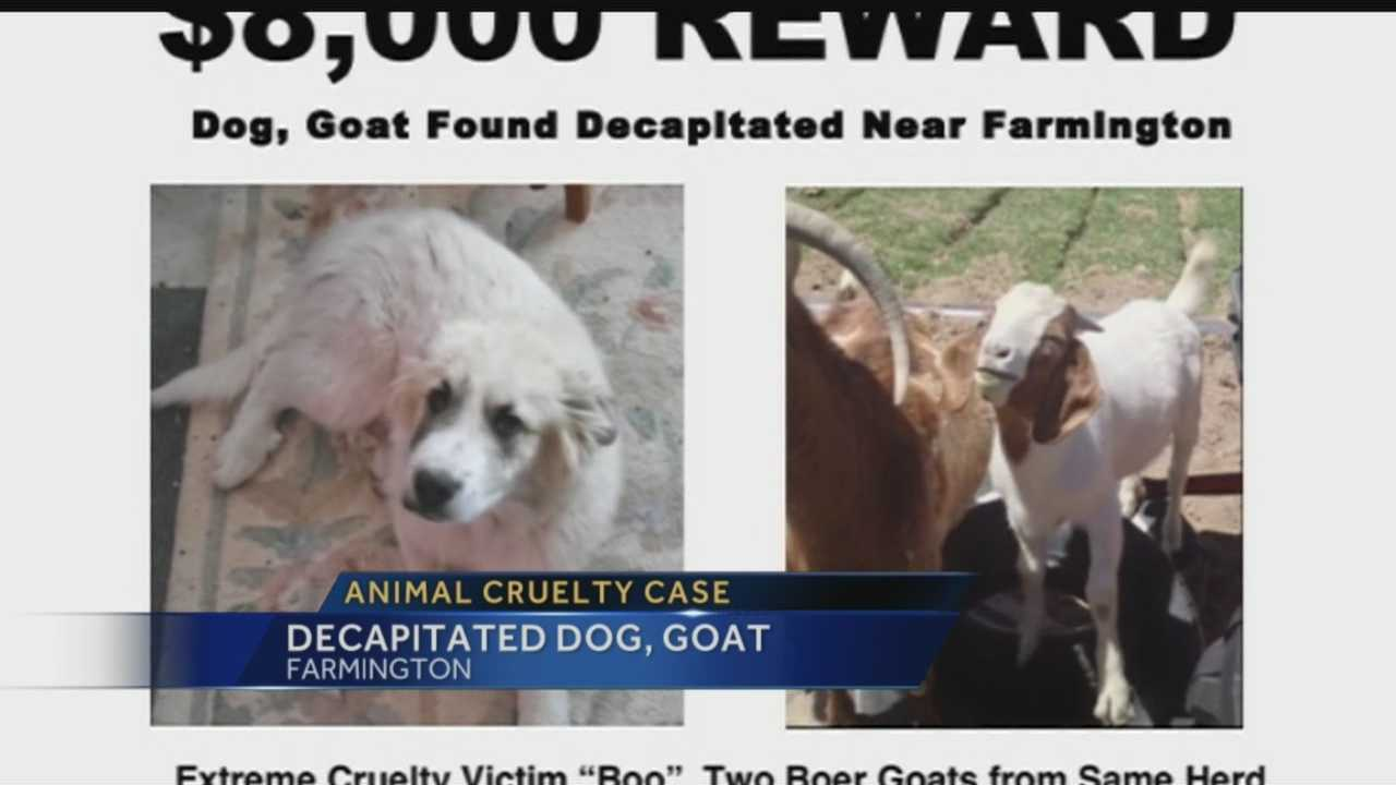 Its a disturbing case of animal cruelty coming out of the Farmington area.