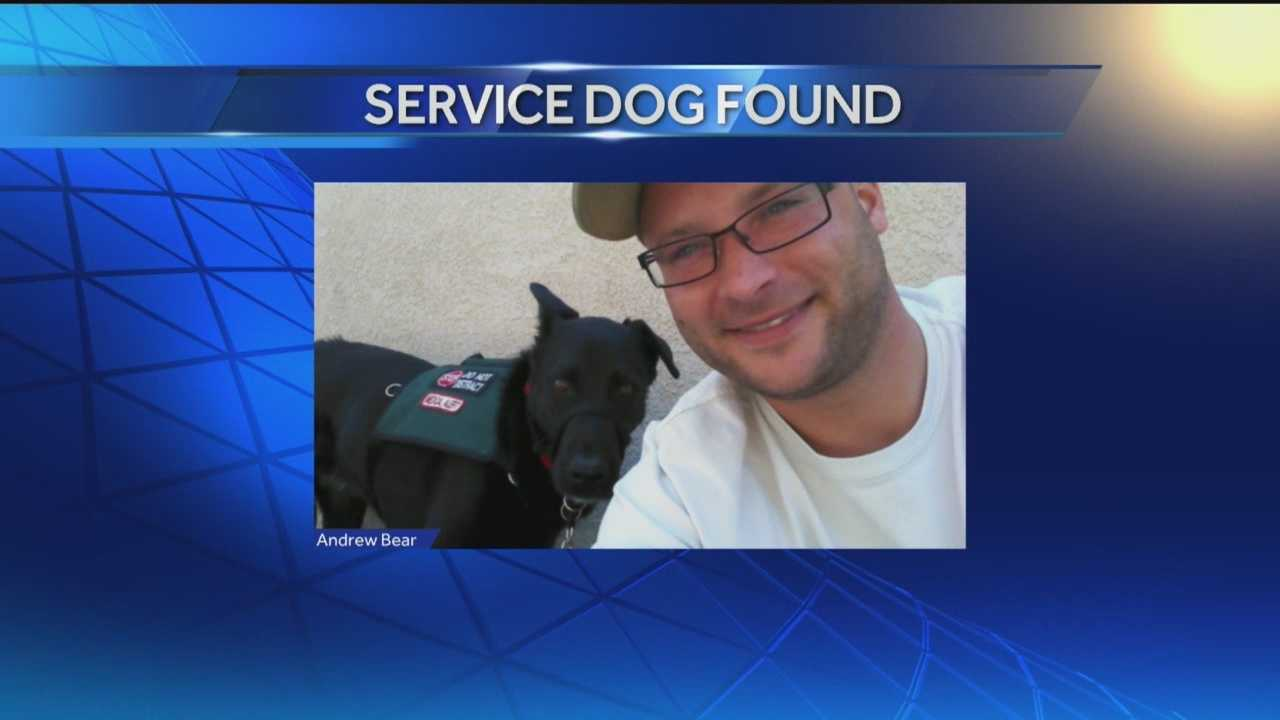 Action 7 News helped reunite a veteran with his missing service dog.