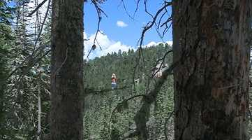 6. Zipline tours aren't available every day. A full schedule is available on Angel Fire's website