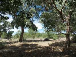 Why not go for a jog or bike ride through the Bosque? How about the Sandia foothills?