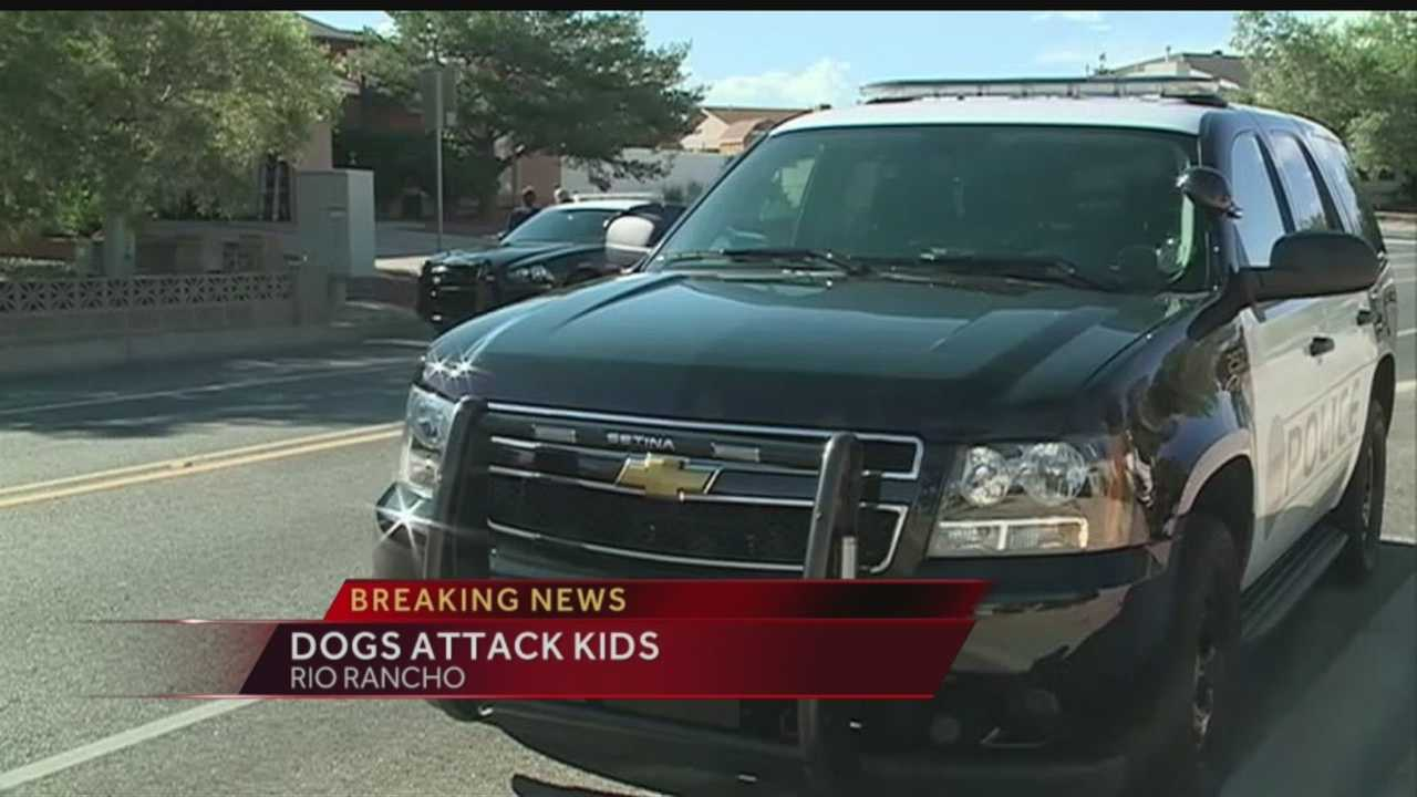 A toddler has been rushed to the hospital and a mother seriously hurt today after a dog attack in Rio Rancho.