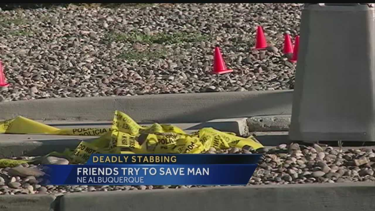 Deadly stabbing: Friends try to save man