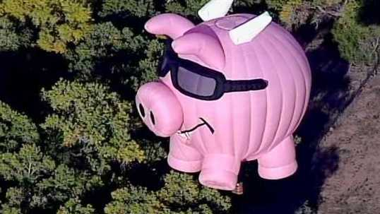 Some sort of pig (there are usually a few, and SpiderPig counts)