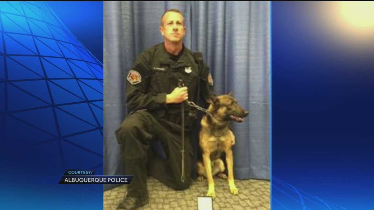 A four-legged member of the Albuquerque police received one of the department's highest honors Tuesday.