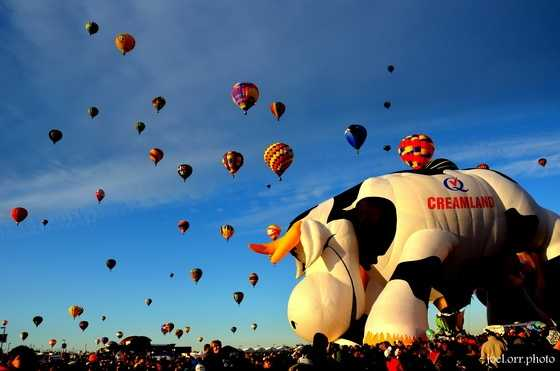 Get pumped for Balloon Fiesta with these 50 amazing photos submitted to u local.