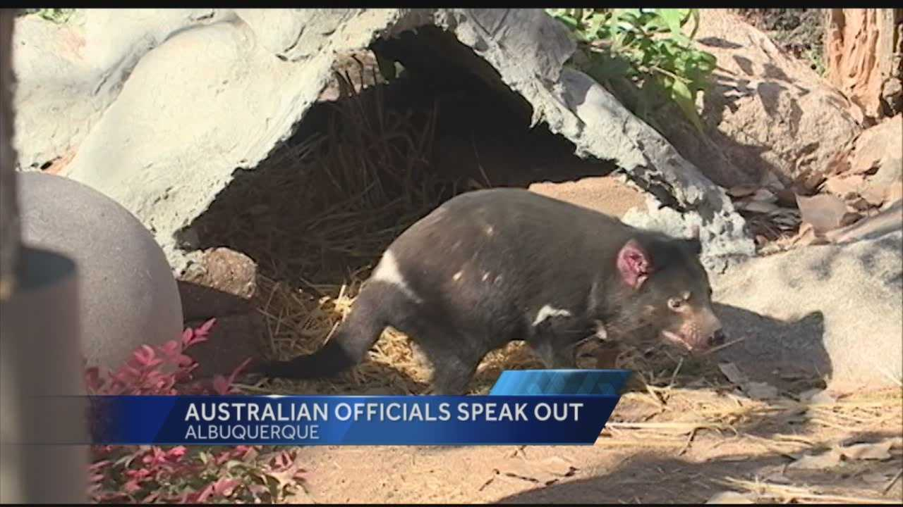 For the first time we are hearing from the Australian Zoo that let our state borrow Jasper.
