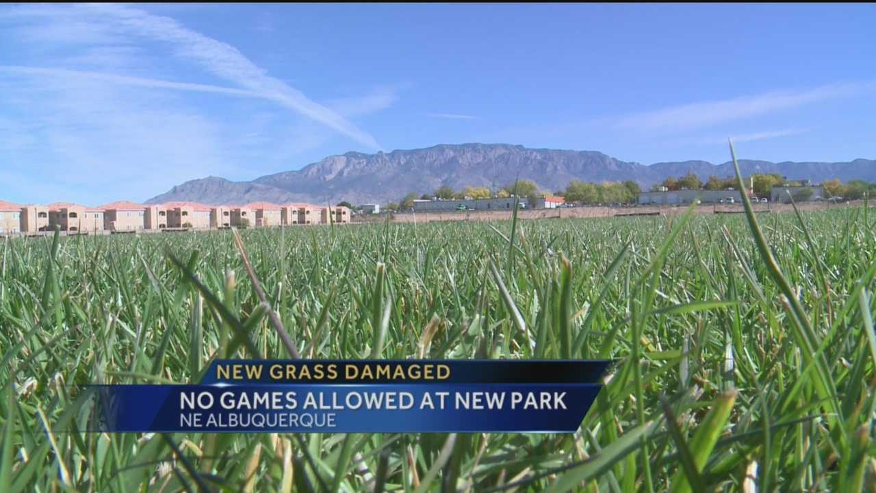The grass at a new Albuquerque park is already damaged.