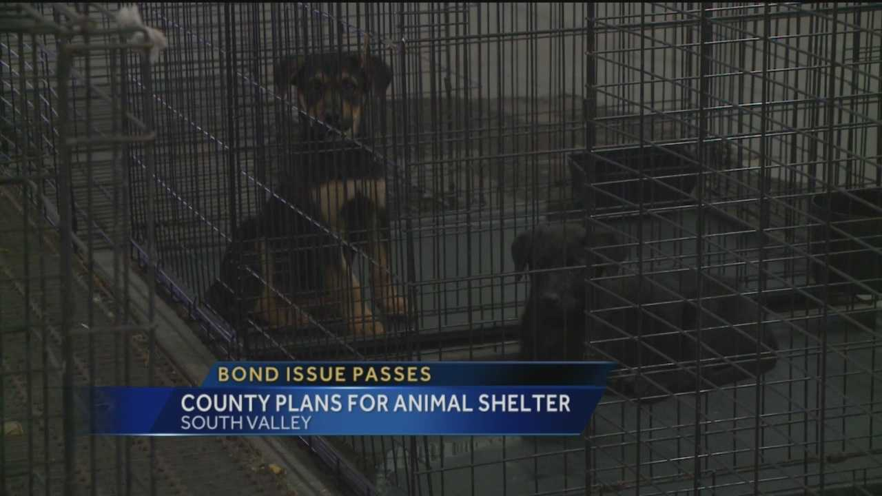 Bernalillo County is hoping to build a new, larger animal shelter to ease overcrowding problems.