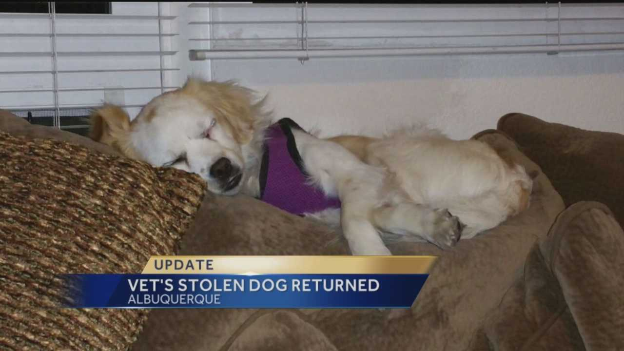 A veteran's dog will be home for Christmas.