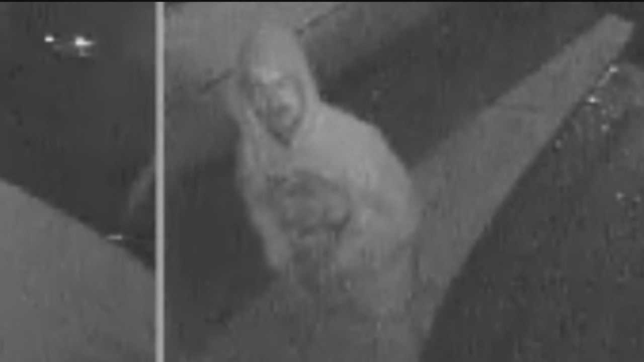 Police are looking for a person who they say caused tens of thousands of dollars in damage overnight in Paradise Hills.