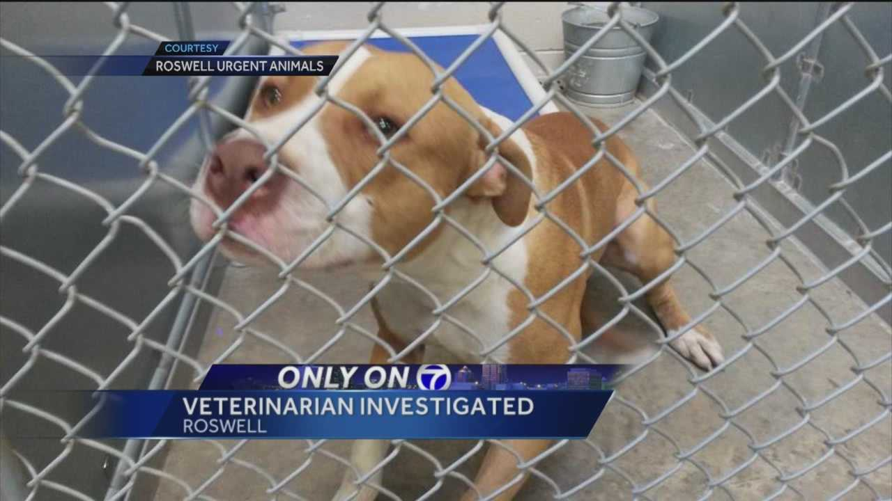 Controversy continues in Roswell. A few weeks ago we told you animal rescue groups were upset with Roswell animal control because of its high rate of euthanasia.