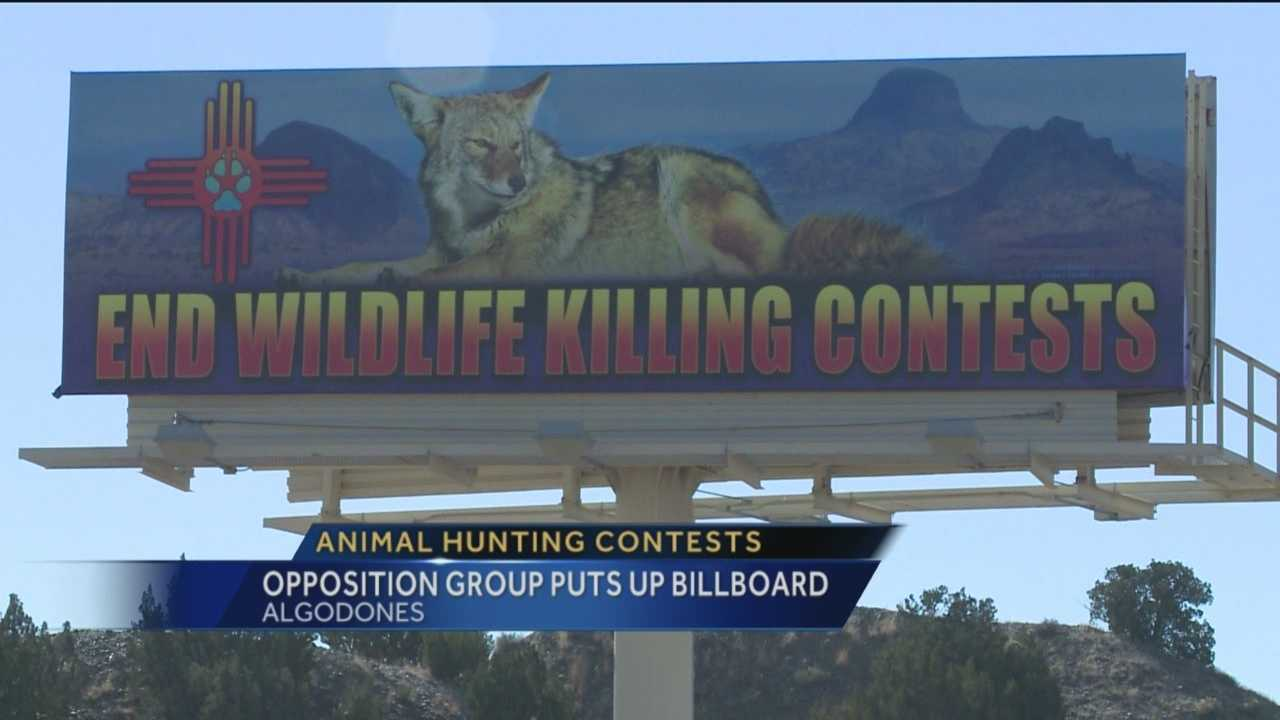 Organized animal hunts have been going on for years. But now a group opposed to the contests have put up a big message they hope will help end the hunts.
