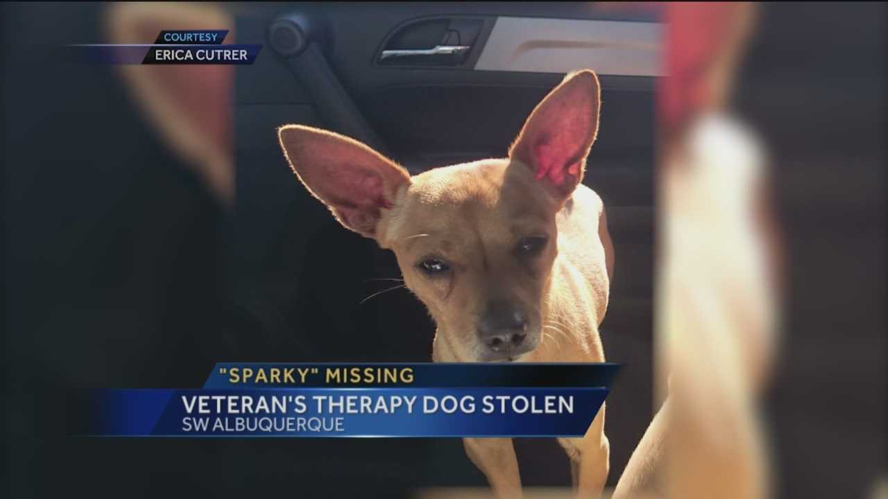 An Albuquerque Veteran says, she is devastated her therapy dog was taken in the middle of the night.