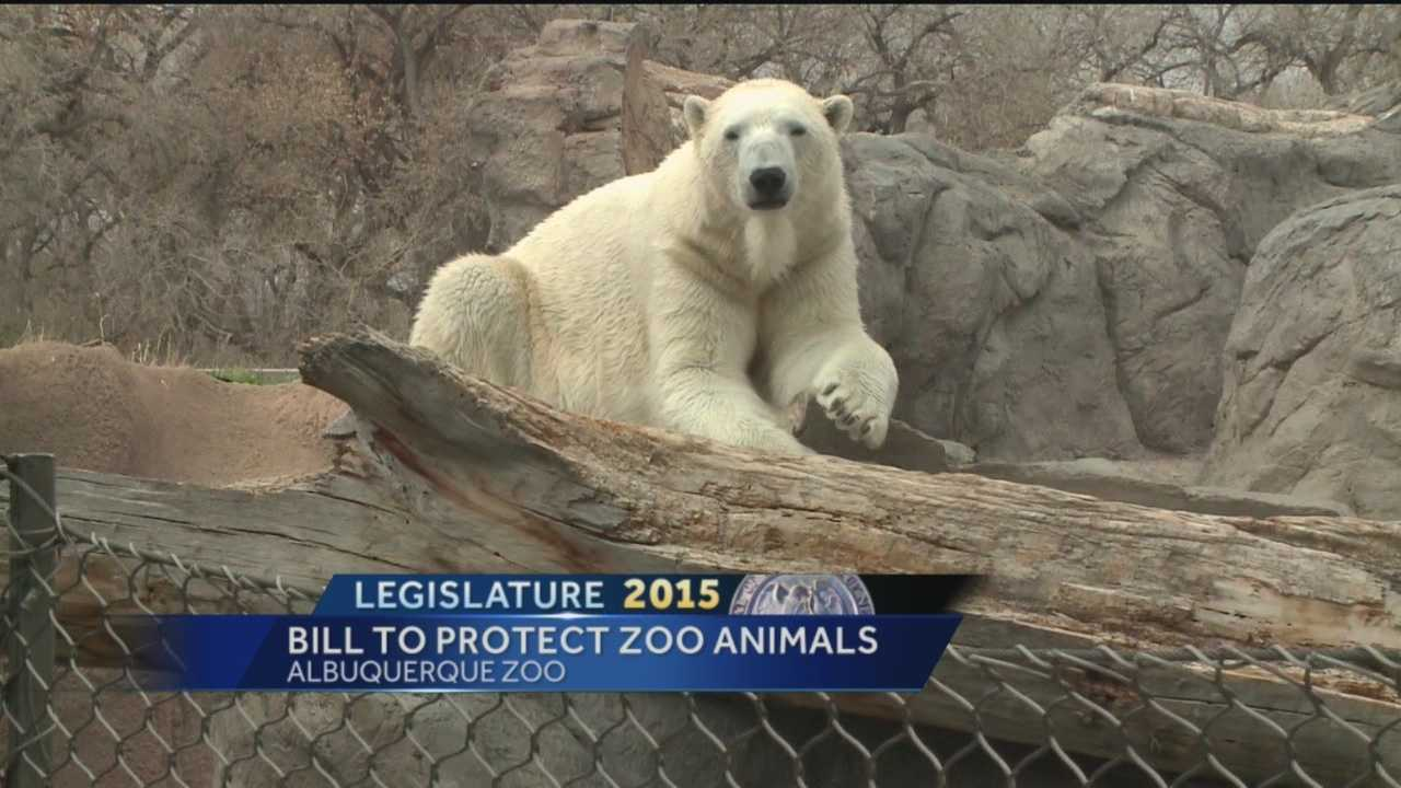 Bill To Protect Zoo Animals