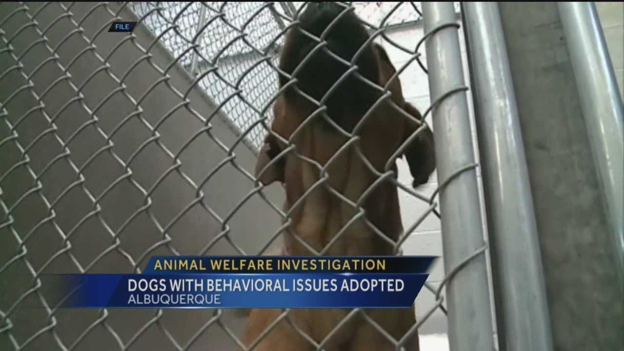 New details tonight on allegations against Albuquerque's Animal Welfare Department.