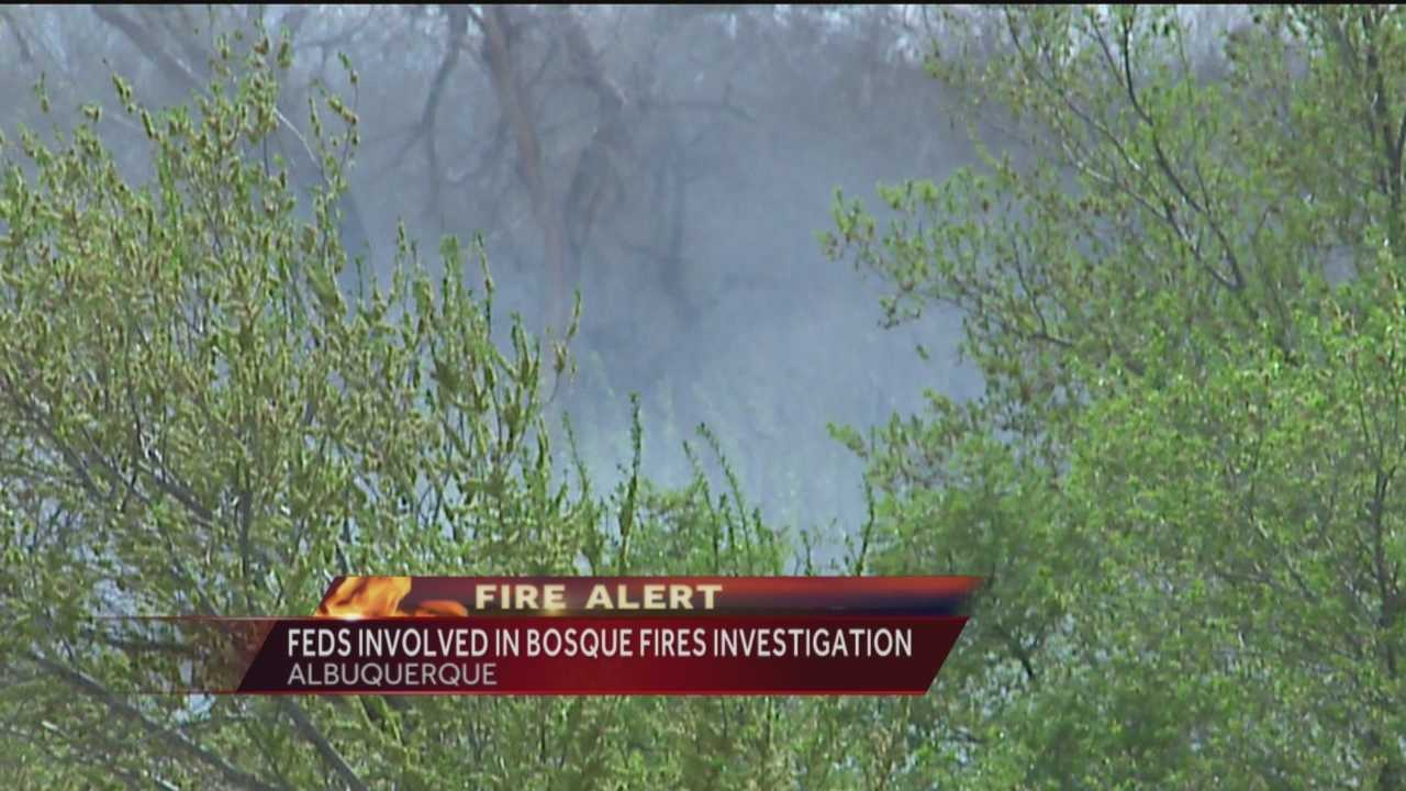 There have already been 150 wildfires since the start of the year, including several in Albuquerque's Bosque last week.