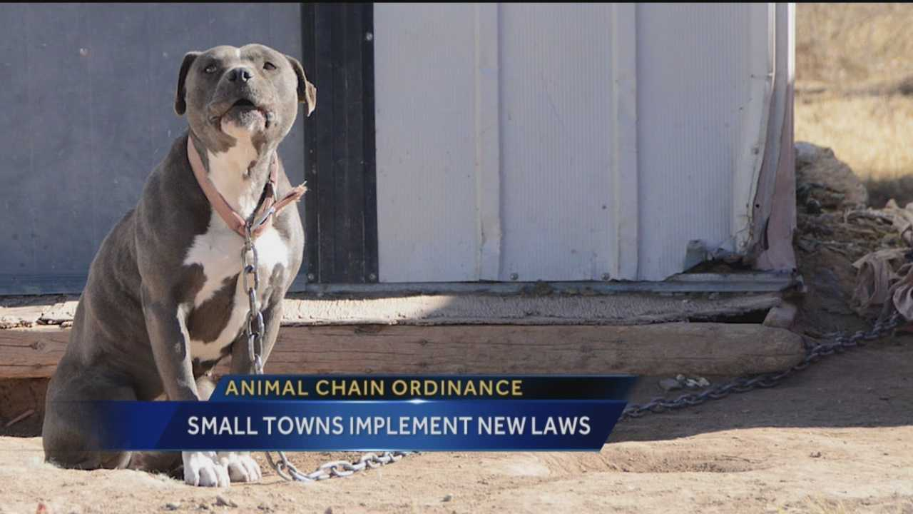 Animal Chain Ordinance