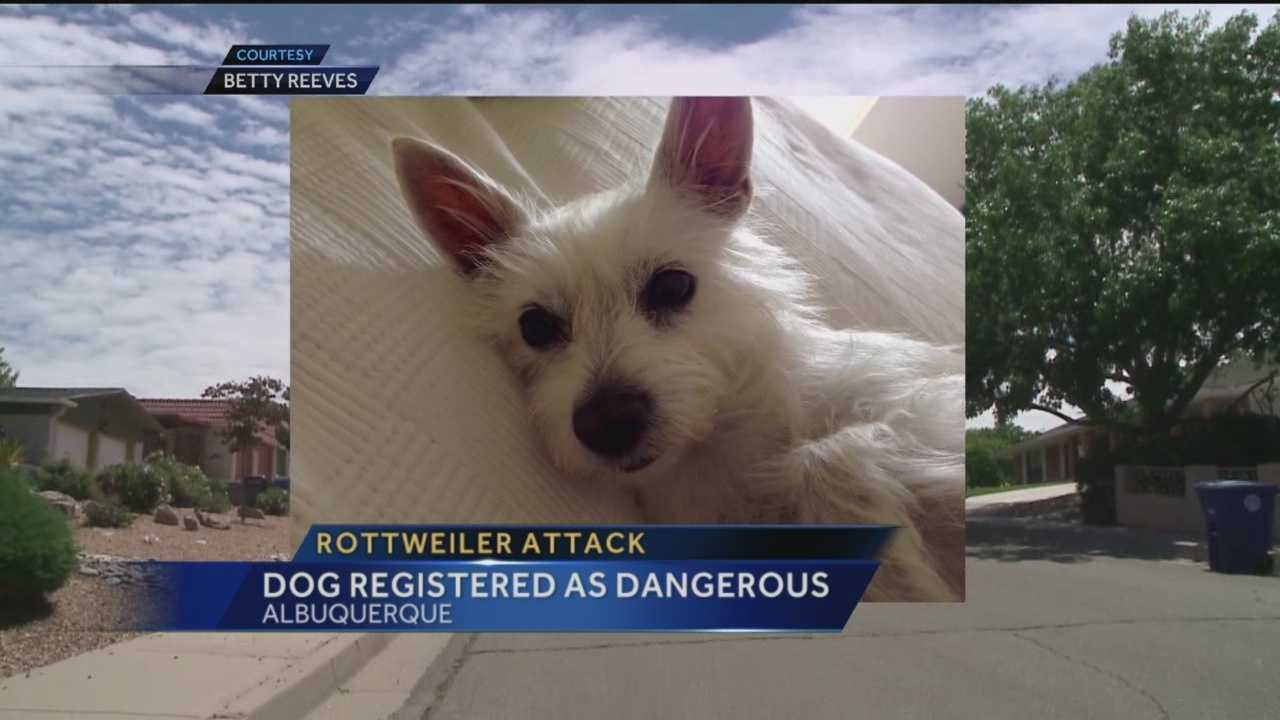 An Albuquerque woman says she had to put down her pup after another dog attacked it.