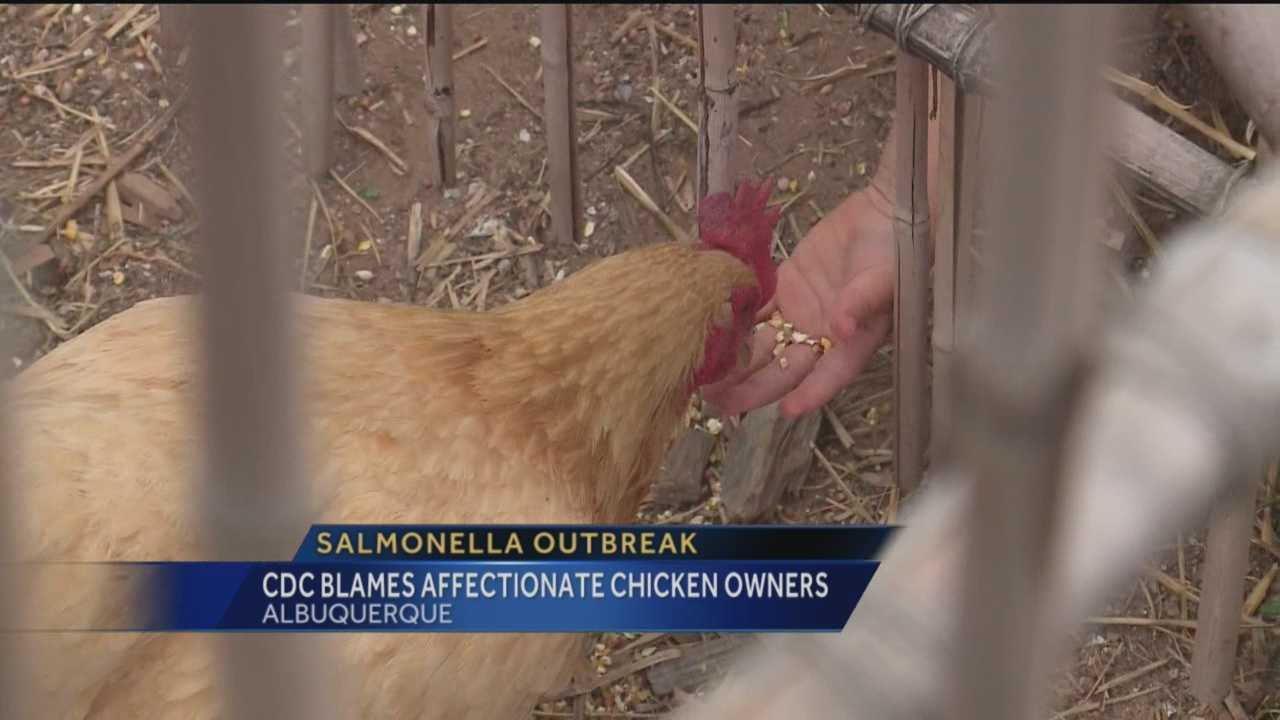 Overly affectionate chicken owners are to blame for a salmonella outbreak, according to the Centers for Disease Control and Prevention.