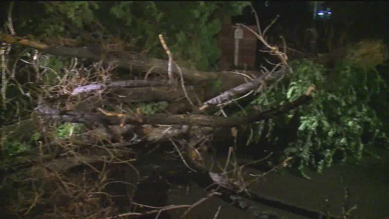 The storm caused major damage around the Albuquerque area.
