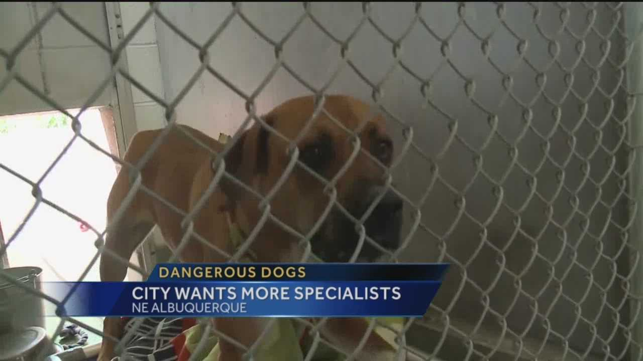 Two reports brought bad news for Albuquerque's Animal Welfare Department.