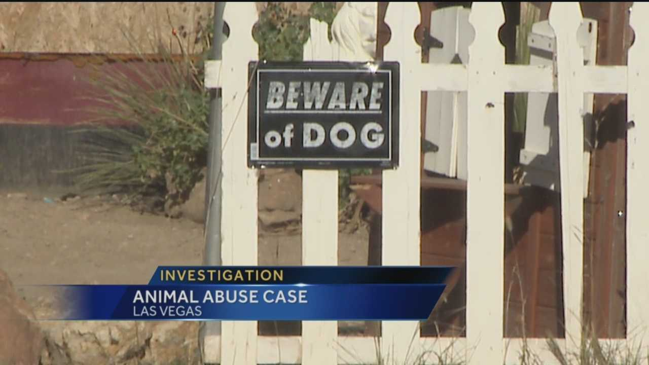 San Miguel County has seen a lot of unsettling animal abuse cases lately.