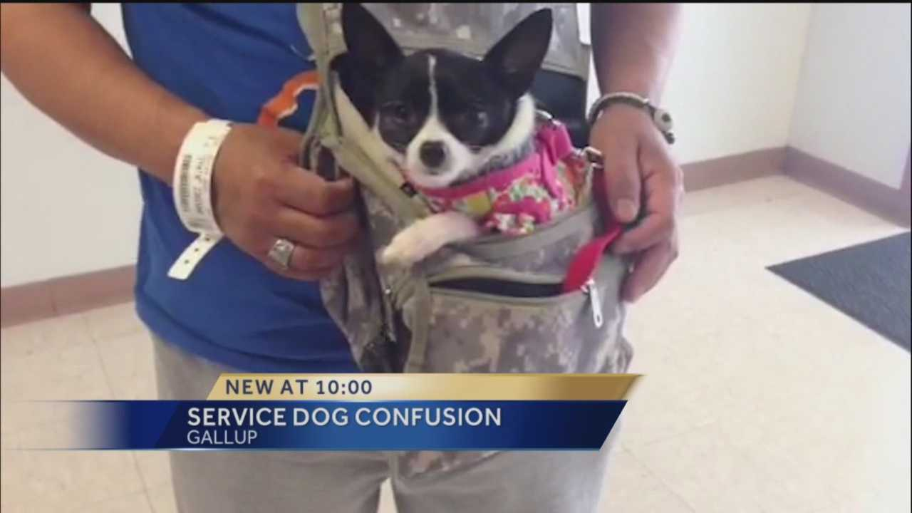 A restaurant wants to spread awareness about service dogs after a misunderstanding with one of its customers.