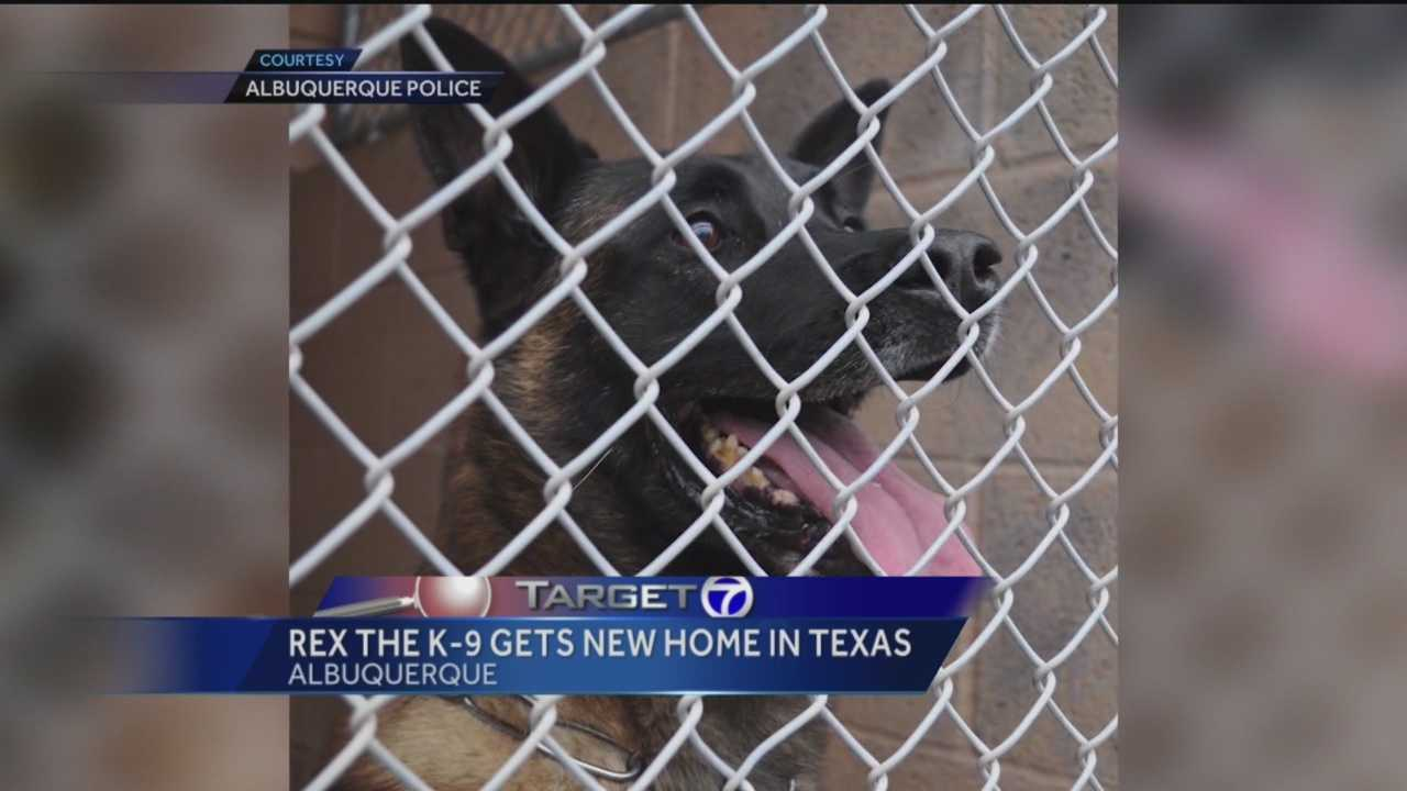 The now retired police and military dog has spent weeks at an Albuquerque animal shelter.