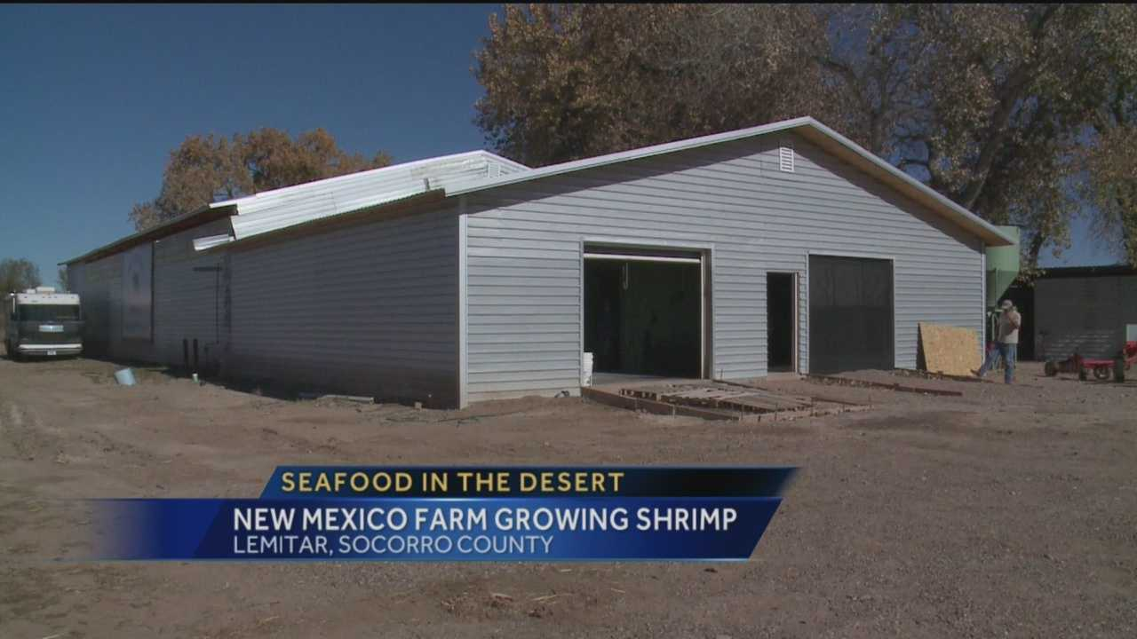 When you think New Mexico you don't usually think seafood.