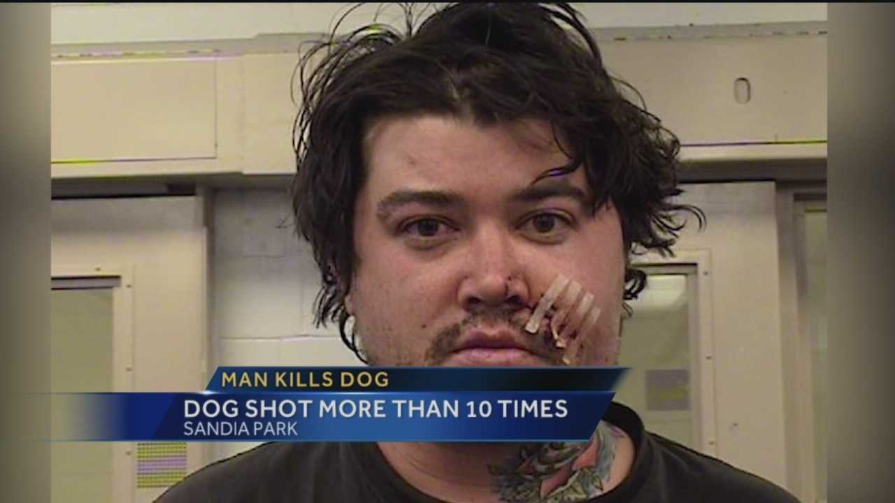 Bernalillo County deputies said a man shot his friend's dog at least 10 times after it bit him in the face earlier this week, according to a criminal complaint.